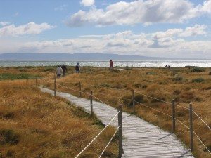 Chile_Punta Arenas_Otwas Sound