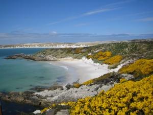 Einzigartige Landschaft auf den Falklandinseln.