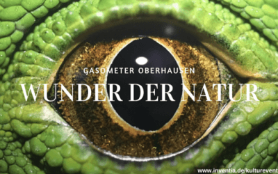 """Recap: Exklusive Führung durch die Ausstellung """"Wunder der Natur"""" im Gasometer Oberhausen"""
