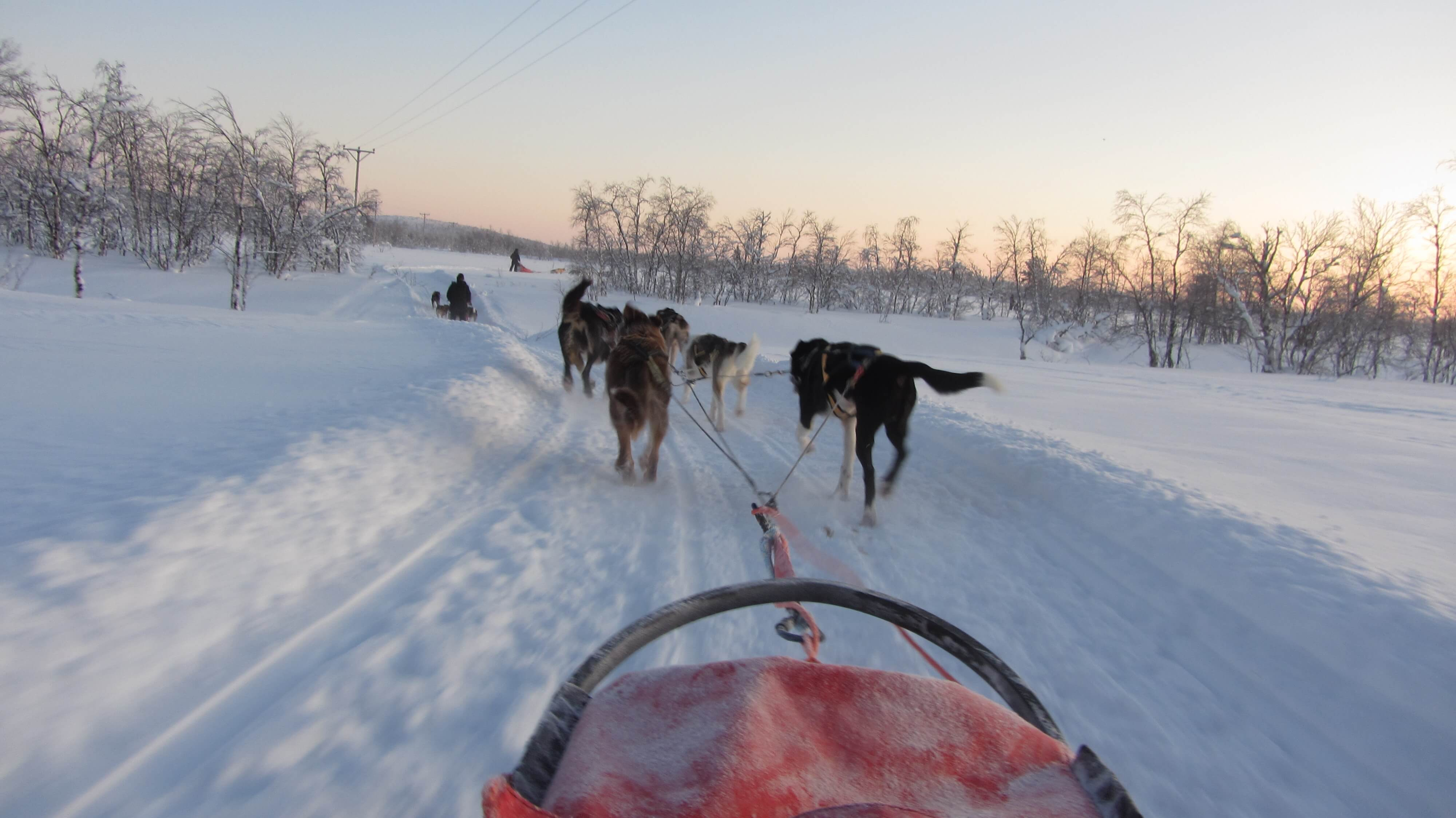 Eine Huskeyschlittentour durch das arktische Schwedisch-Lappland offenbart unvergessliche Ausblicke.