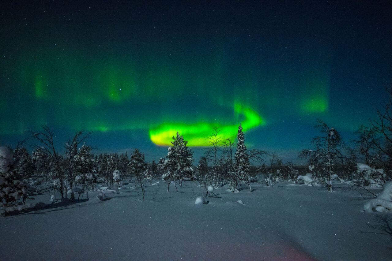 Das Nordlicht scheint hier in der schwedischen Taiga besonders oft und hell.