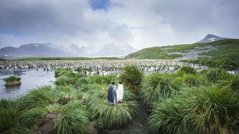 Antarktis in großer Runde mit Falklandinseln