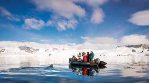 Foto-Ausflüge mit dem Zodiac in der Antartkis