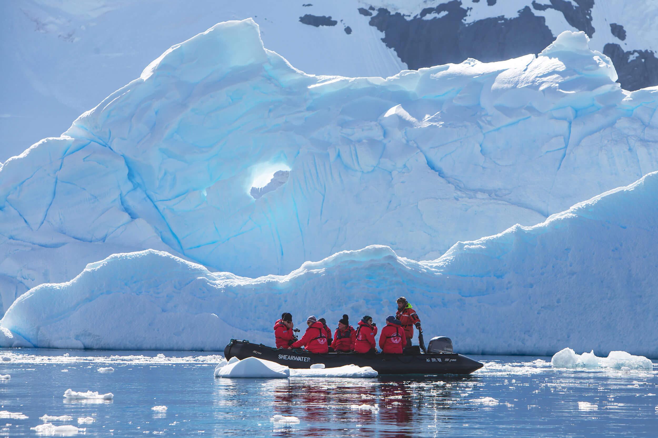 Ausflüge mit dem Zodiac in der Antarktis