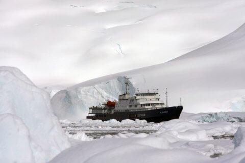 MS Plancius in der Antarktis