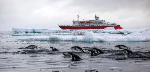 Expeditionsreise in die Antarktis mit der MS Expedition
