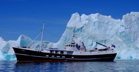 MS Togo vor einem Eisberg