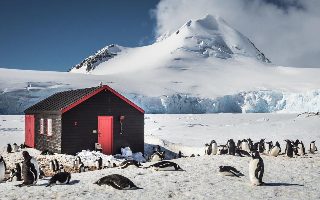 Klassische Antarktis einschließlich Deception Island | MS Ortelius | MS Plancius