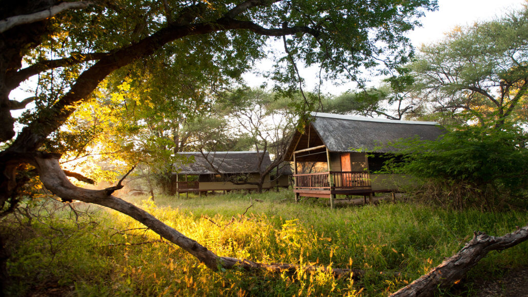 Busch-Camp Makulele Suedafrika