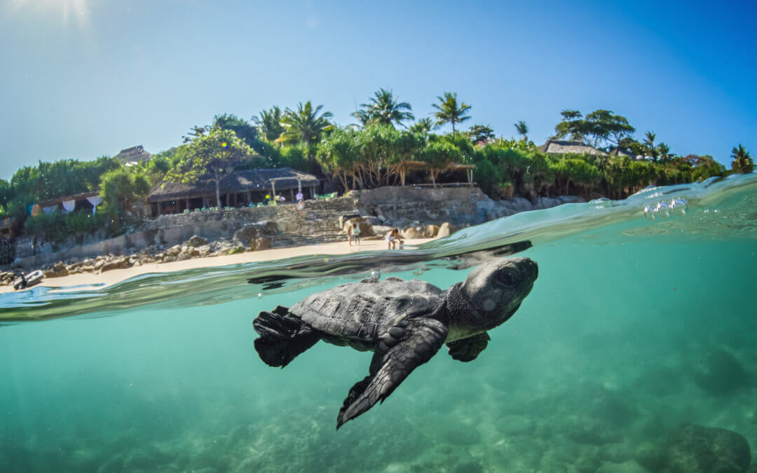 Nihi Sumba – Paradiesisches Insel-Resort im Indischen Ozean