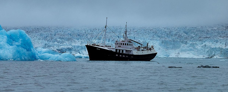 Mikro-Expedition, Naturwunder Spitzbergens, Norwegen, MS-Togo