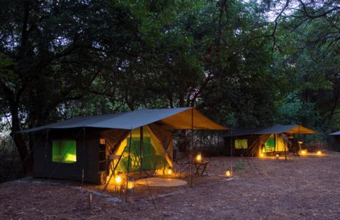 Walking Safari: mobiles Zeltcamp am Abend